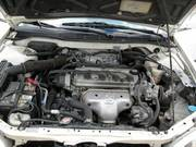 GLOSSY 1999 Honda Accord LX
